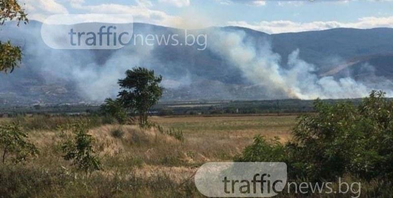 Пожар нанесе щети за 20 000 лева в Калояново