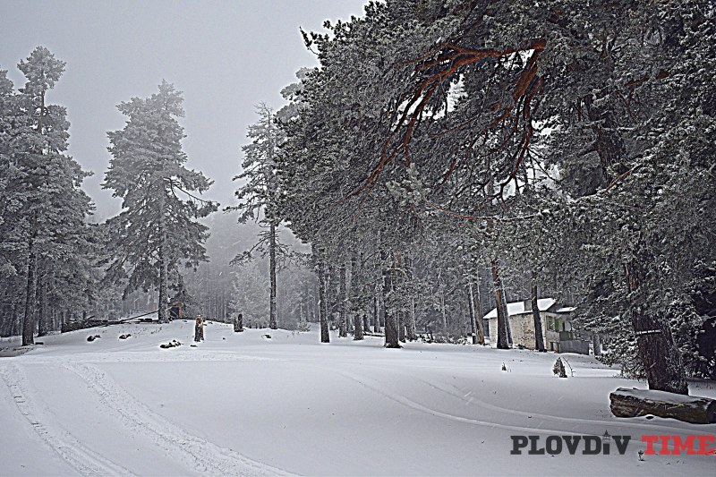 """Сняг се сипе от Лъки до хижа """"Здравец"""", обработват пътищата"""
