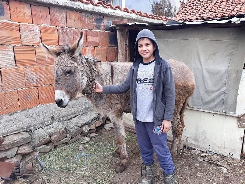 Петокласник от Брезово предпочита фермерския живот пред компютрите СНИМКИ