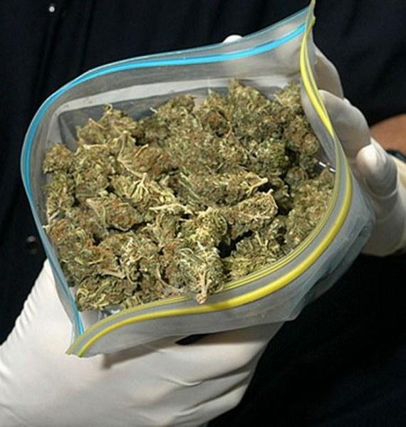 Полицаи спряха за проверка БМВ, откриха пакетчета с марихуана