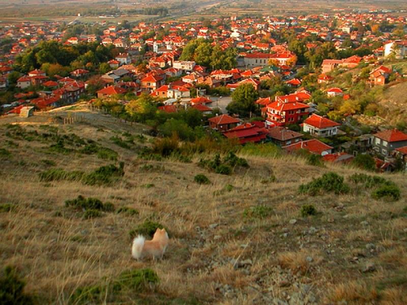 Пловдивски села блокирани от ВиК аварии