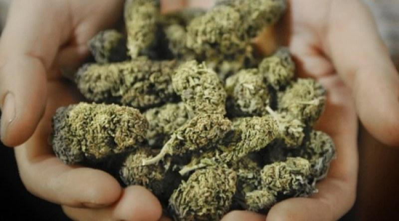 35-годишна дилърка от Житница осъмна в ареста заради марихуана