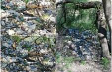 Екобомба в Марица! Пластмаса и боклуци заляха коритото на реката до Гребната база