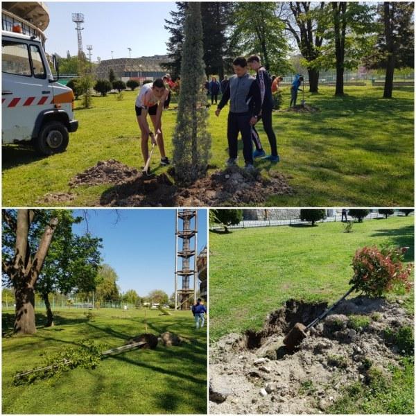 За първи път в Пловдив: Екзотични дървета обогатиха зелената система на Гребната