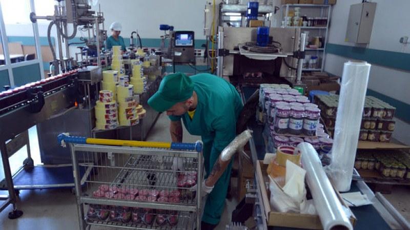 Борсата по труда за община Марица търси екскурзовод и хора за земеделие и производство на консерви