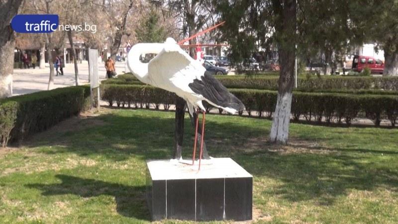 Изграждат Музей на щъркела в Белозем, излекувана птица полита в небето тази събота