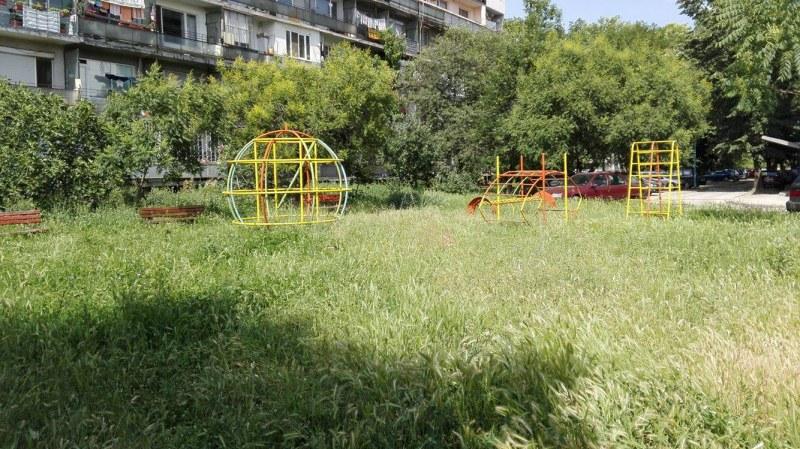 "Паркът зад хотел ""Санкт Петербург"" – джунгла, деца играят в треви по 2 метра"