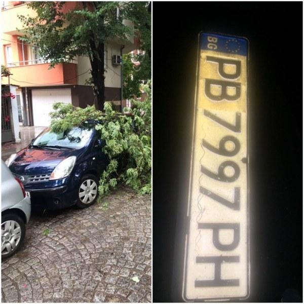 Резултати от пороя: дърво падна върху кола, регистрационни номера по улиците