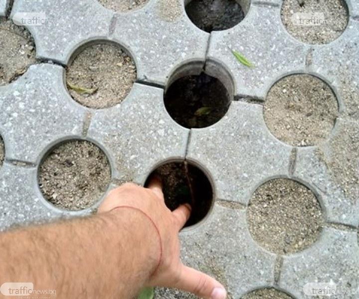 """Внимание! Опасни дупки дебнат децата на площадка в парк """"Белите брези"""" в Пловдив"""