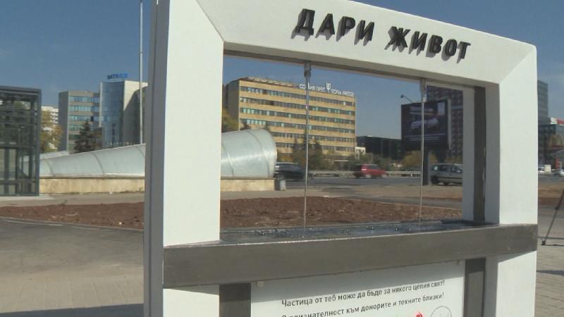 Чешма в памет на донорите на органи ще потече в Пловдив