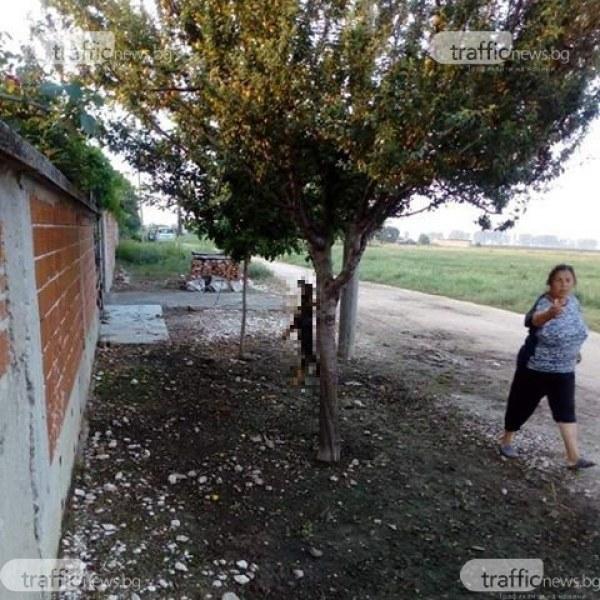 """""""Хрумна ми да го обеся, то си е мое"""", каза Анка, която уби кучето си в Раковски"""
