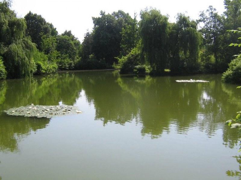 Две деца едва не се удавиха в придошла река край Стамболийски, намесиха се водолази и пожарникари
