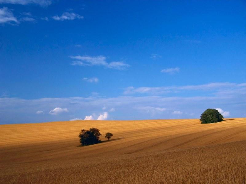 Започват заседанията за собственост и ползване на земеделските земи в Брезовско