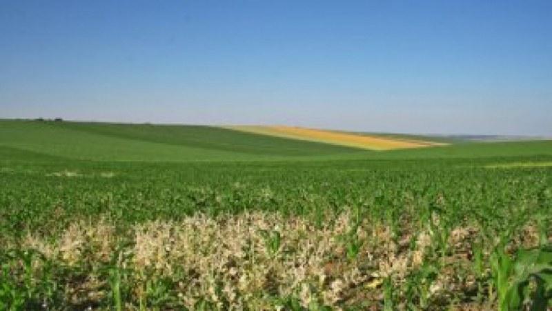 """Насрочени са заседанията за собственост и ползване на земеделските земи в община """"Родопи"""""""
