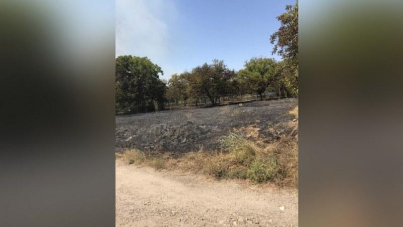 """Голям пожар бушува край двореца """"Кричим"""""""