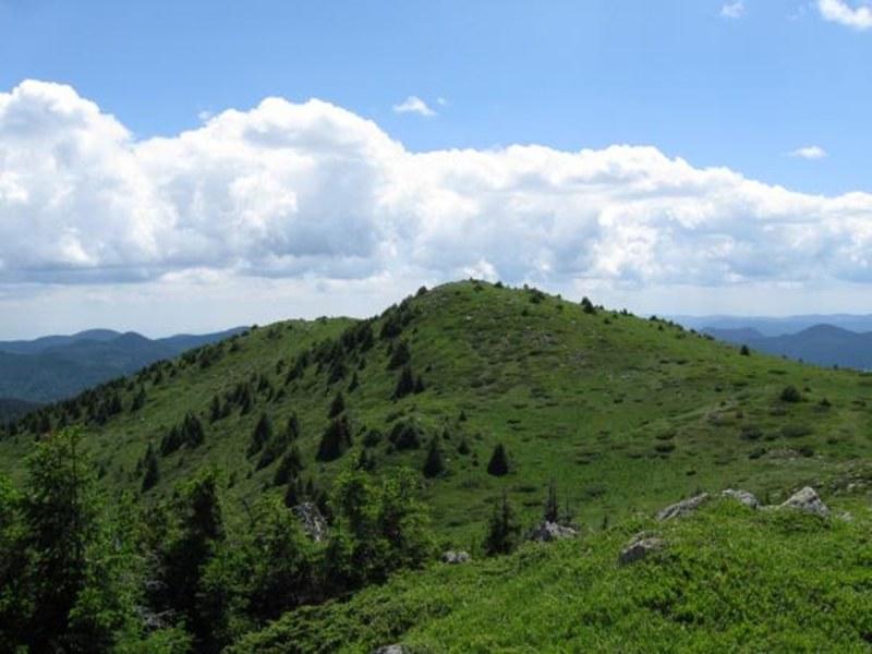 Асеновградски планинари изкачват втория най-висок връх в Родопите