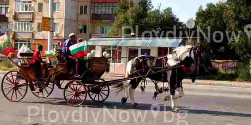 Патриотично настроение! Каруца с български знамена препуска в галоп из Столипиново