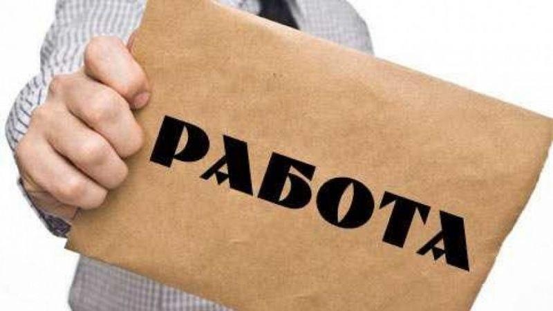 12 учители и над 100 работници се търсят в момента в Раковски