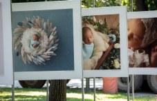 """Приказна изложба """"Бебетата на Пловдив"""" краси Цар-Симеоновата градина"""