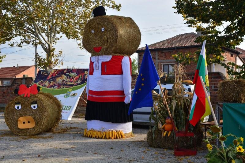 """Елитни говеда и овчарски кучета на изложението в Раковски, фермери предлагат """"от пиле мляко"""""""