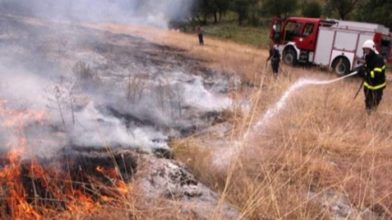 Два пожара в близост до Пловдив потушиха огнеборците за ден