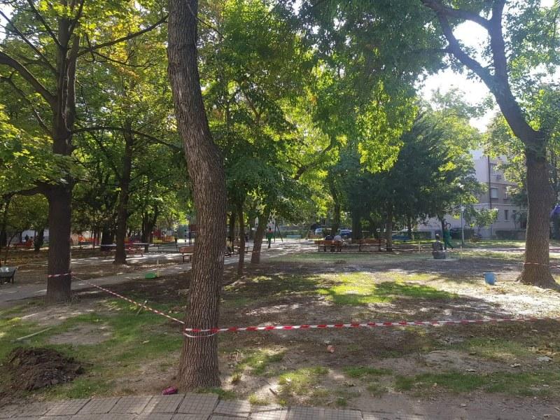 """Обагородяват парк """"Надежда"""" в Кършияка, възстановена е и чешмичката"""