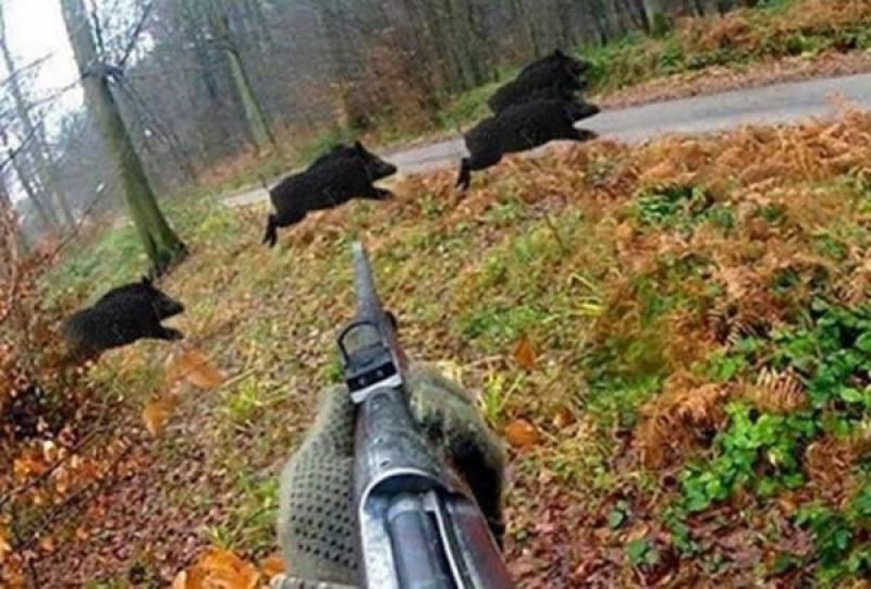 Есенният ловен сезон започна със засилени мерки за сигурност в Пловдивско