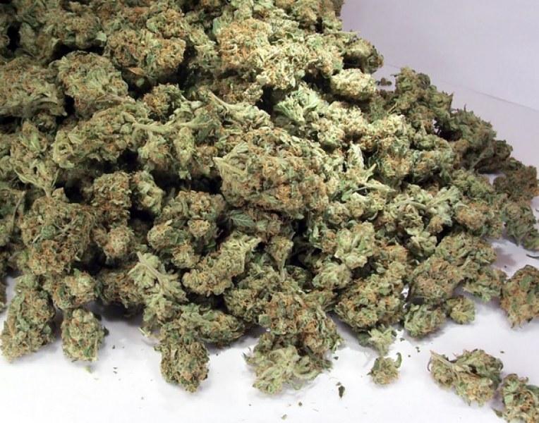 Спипаха млада жена с над 4 кг марихуана край Калояново
