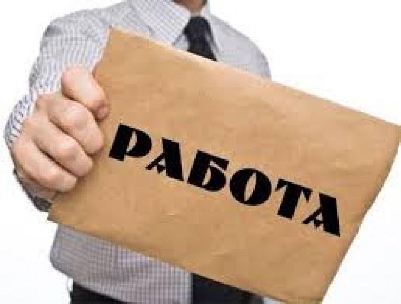 """Шестима учители и десетки работници търсят в община """"Родопи"""""""