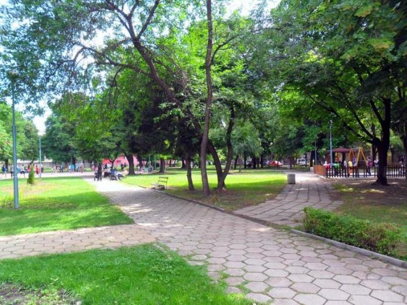 """Кой не иска да живее в по-зелен район? Може ли """"Южен"""" да стане зеленият оазис на Пловдив?"""