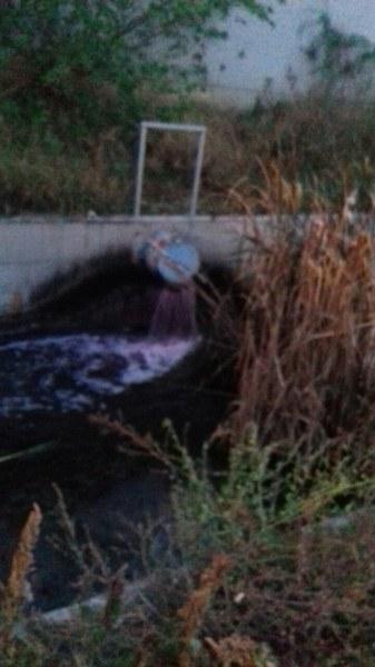Река край Съединение стана тъмносиня, винарска изба излива незаконно отпадъчни води