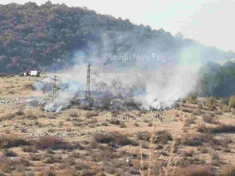 Пожар пламна на метри от борова гора край Кричим