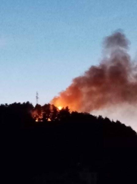 Пожар лумна край Катуница