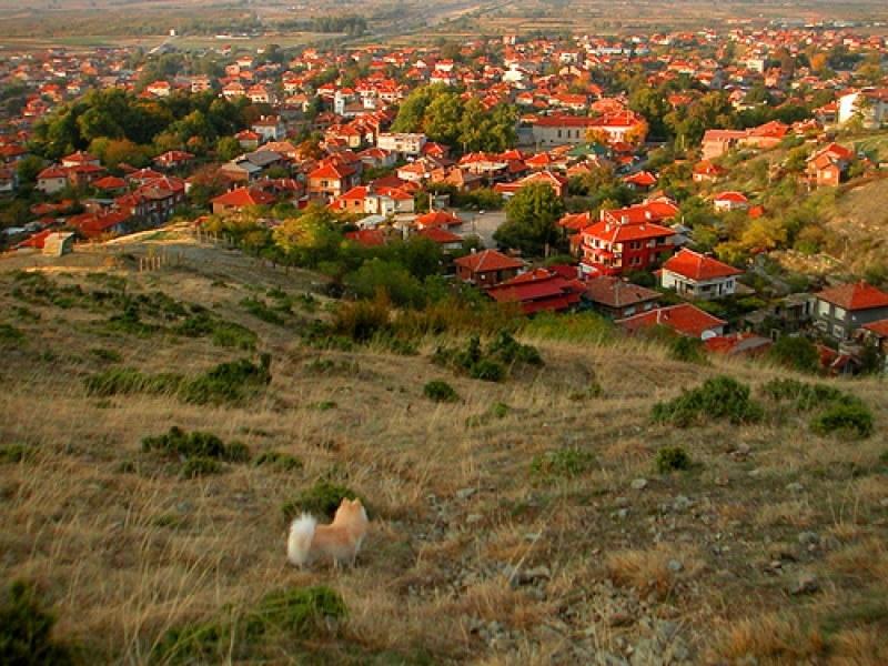 Кой ще управлява селата в Пловдивско, ето пълен списък на победителите