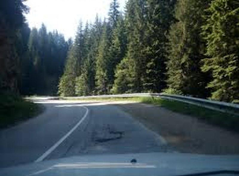 Спират движението по пътя Смолян - Кричим, обходният маршрут - през Асеновград