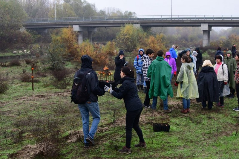 Последното залесяване за сезона по Марица край Стамболийски е тази седмица, търсят се доброволци