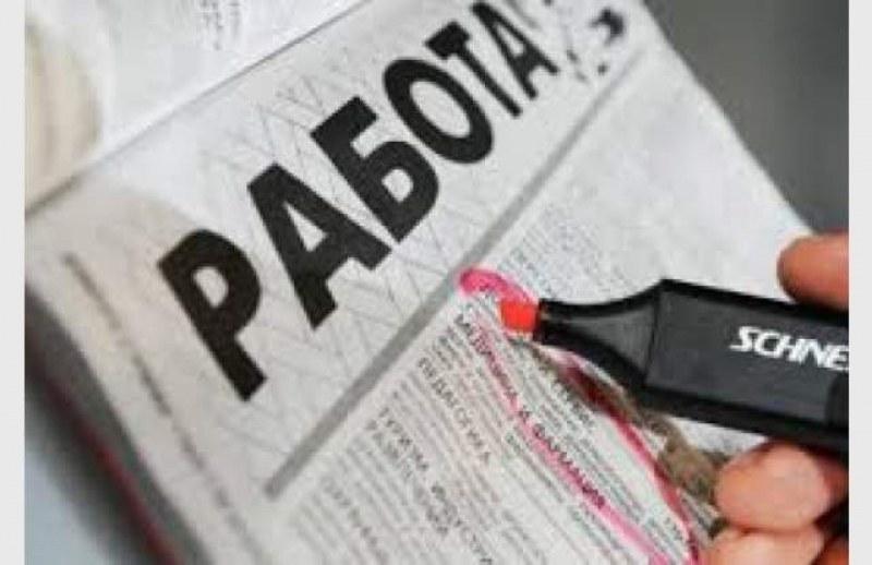 Бюрото по труда в Асеновград обяви само 30 свободни работни места