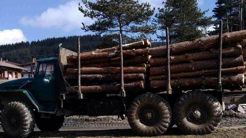 Нови задължения имат собствениците на камиони, извършващи добив на дървесина в Хисарско