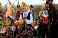 Вино се лее утре в Пловдивско, зарязват се лозя, земята се люлее от кръшни хора