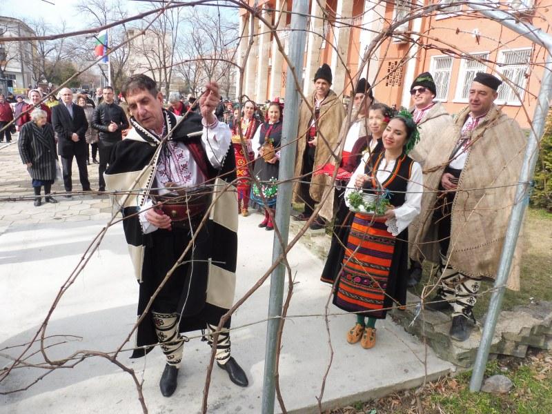 Стамболийски отпразнува Трифор Зарезан! 78-годишна жена е майсторката на най-хубавото вино