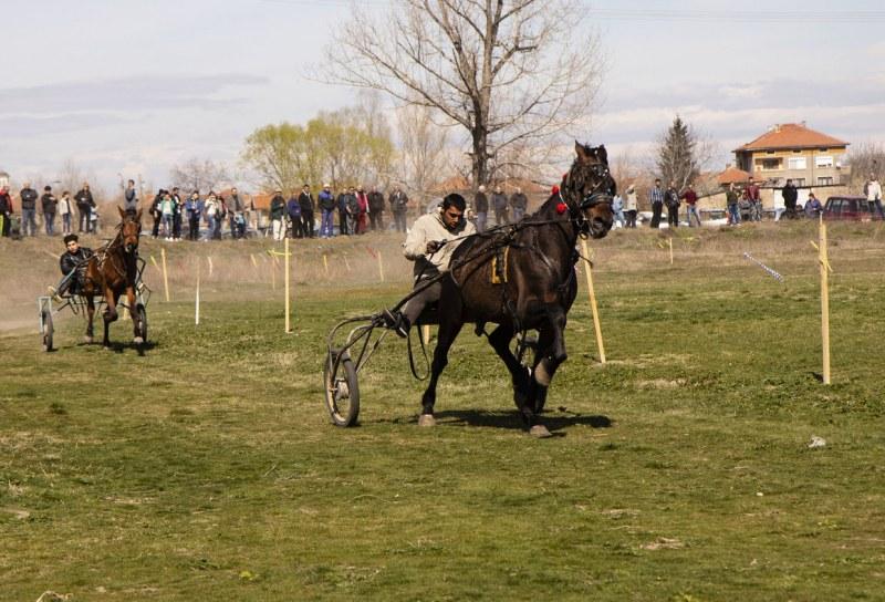 Състезания с коне и магарета вдигат настроението на Тодоровден в Първомайско
