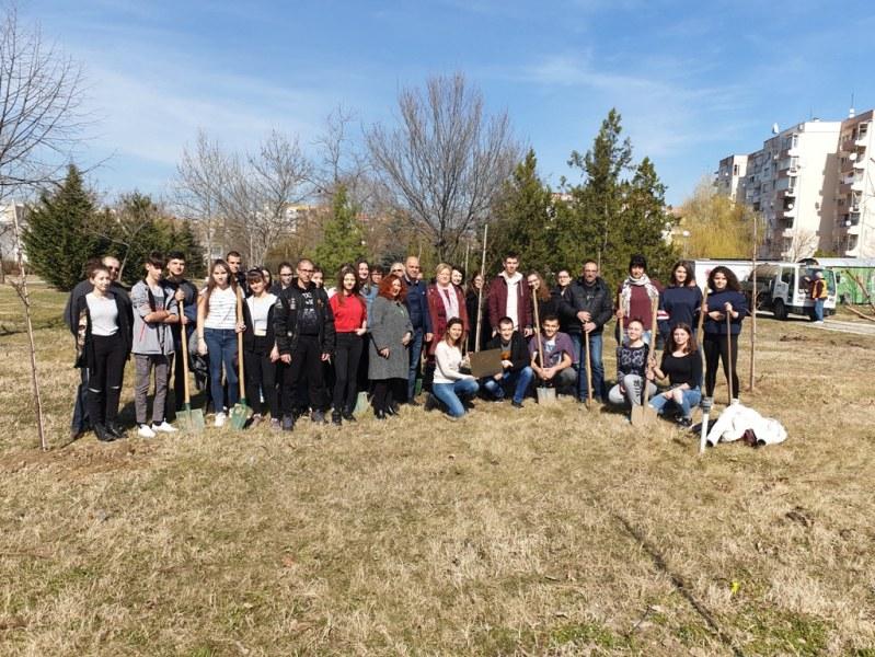 10 японски вишни пуснаха корени в горичката на Търговската гимназия в Пловдив
