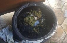 Дилър в Кършияка драсна кибрита на дрогата, едва не се самозапали