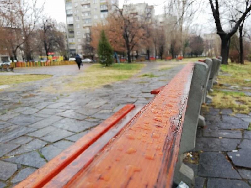 Засаждат 100 дървета в Асеновград и хиляди цветя