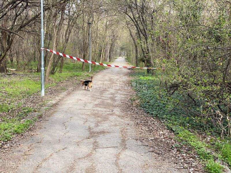 Отцепиха любимо място за разходки в Пловдив