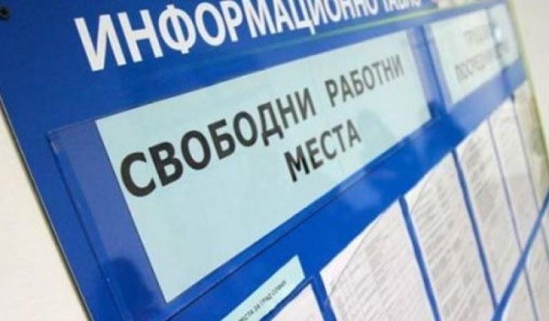 Съобщиха свободните работни места в Асеновградско