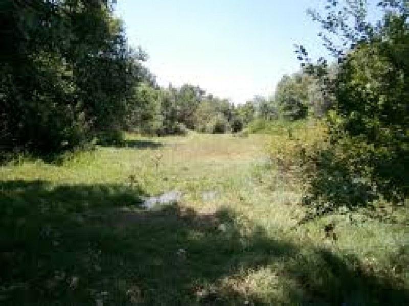 Предлагат защитени зони край Раковски и Първомай, тече обществено обсъждане