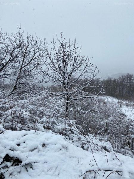 """Над 15 сантиметра сняг покри викопланинските села на община """"Родопи"""""""