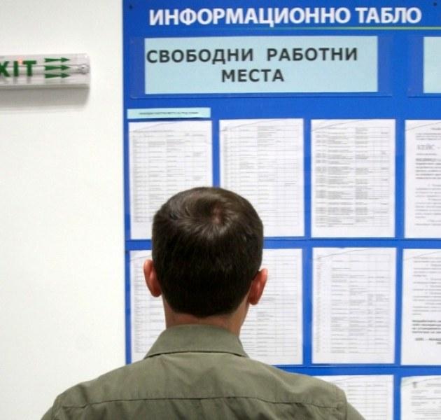 Само 36 свободни места обяви бюрото по труда в Раковски, търсят сметосъбирачи и общи работници