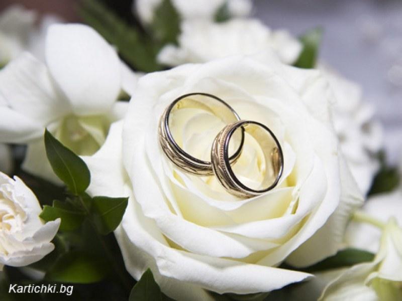 Влюбени ще си кажат ДА на първата изнесена сватба в Пловдив
